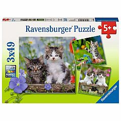 TIGER KITTENS 3X49PC PUZZLE